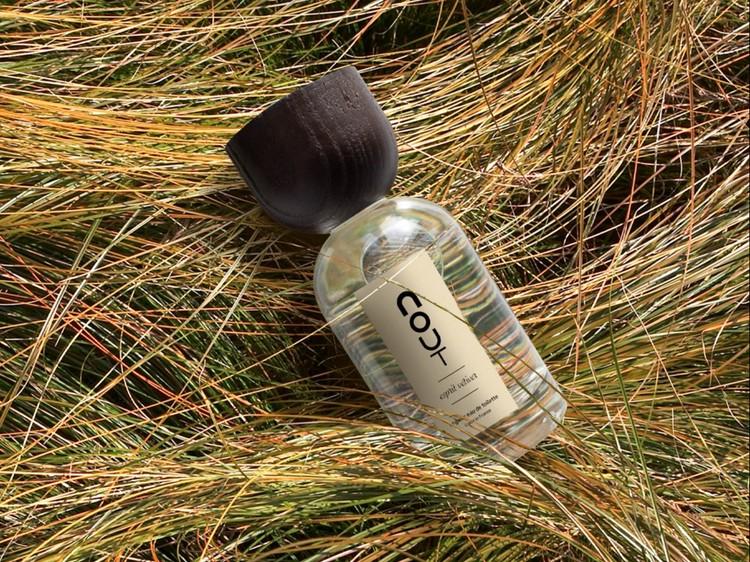 Nout parfum esprit vetiver 100ml